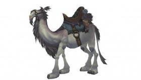 Белый Ездовой Верблюд