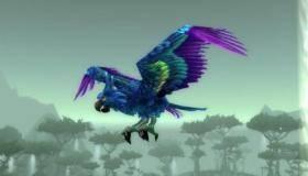 Клетка с попугаем (гиацинтовый ара)
