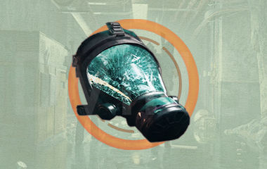 Coyote's Mask Exotic