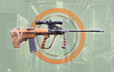 Bighorn Exotic Assault Rifle Weapon