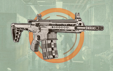 The Ravenous Exotic rifle