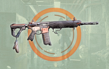 Eagle Bearer Exotic Assault Rifle Weapon