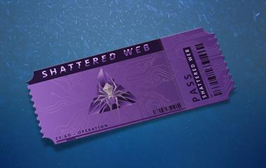 "Operation ""Shattered web"""